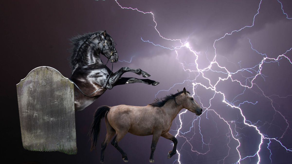 The Black Horse, the Pale Horse, the Riders and Their Power